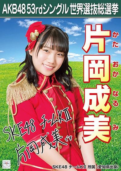 片岡成美 AKB48 53rdシングル 世界選抜総選挙ポスター