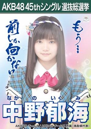 AKB48 45thシングル選抜総選挙ポスター 中野郁海