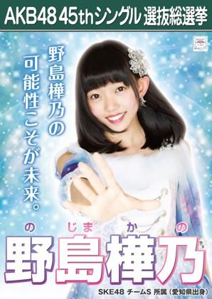 AKB48 45thシングル選抜総選挙ポスター 野島樺乃