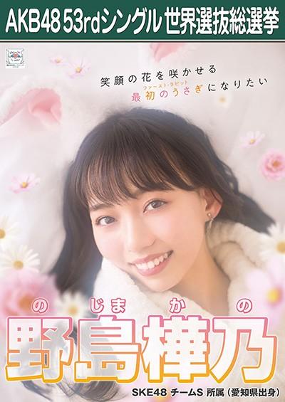 野島樺乃 AKB48 53rdシングル 世界選抜総選挙ポスター