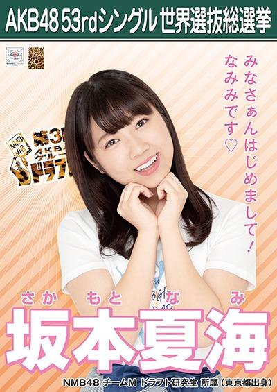 坂本夏海 AKB48 53rdシングル 世界選抜総選挙ポスター