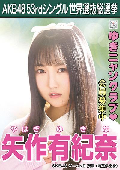 矢作有紀奈 AKB48 53rdシングル 世界選抜総選挙ポスター
