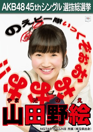 AKB48 45thシングル選抜総選挙ポスター 山田野絵