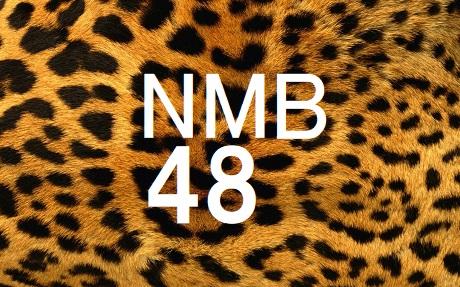 NMB48メンバー一覧 (チーム別)