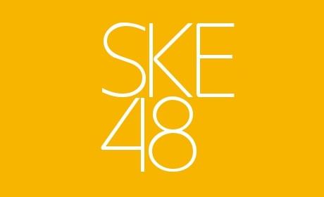 SKE48メンバー一覧 (チーム別)